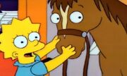 Lisa pony