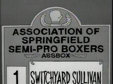 Associationboxer