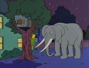 Bart Gets an Elephant 50