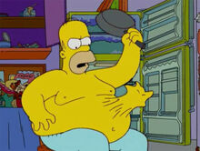 Homer gato barriga frigideira