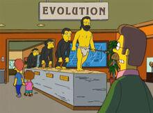 Flanders museu evolução