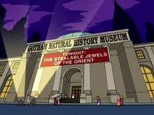 Gotham natural history museum 18x11