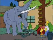 Bart Gets an Elephant 41