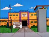 Springfield Elementary School and Prison