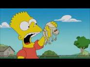 Bart about to eat the frog