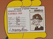 Prawo jazdy Burnsa