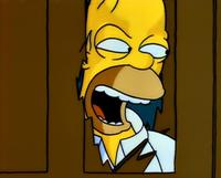 Homer shiningspoof