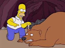 Homer urso localizador orelha