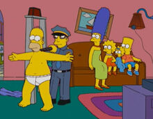 Homer detector metal