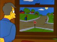 Skinner watching view