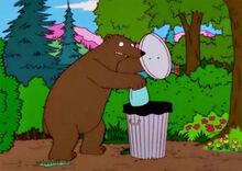 Urso saco lixo 11x14