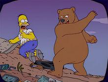 Homer ataque urso tv