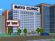 Clinic Mayo