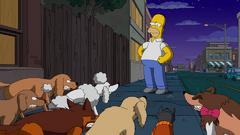 DogtownPromo1