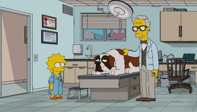 File:Lisa the Veterinarian 71.JPG