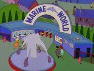 Marine World -00002