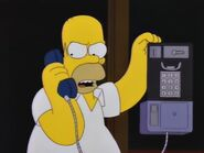 Deep Space Homer 30