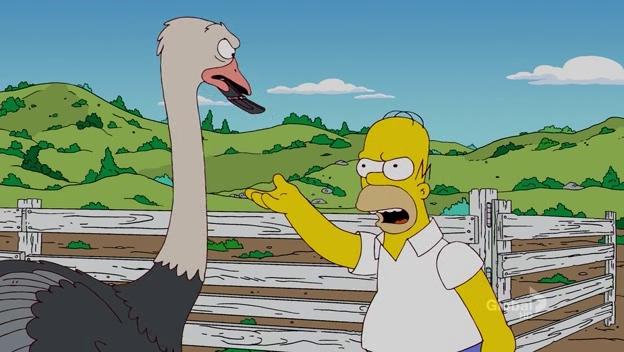 File:How Munched Is That Birdie in the Window 99.JPG