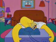 Homer Badman 101