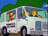 Springfield Dog Pound