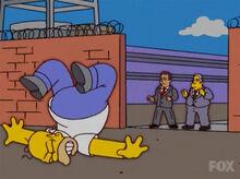 Homer demitido 15x10
