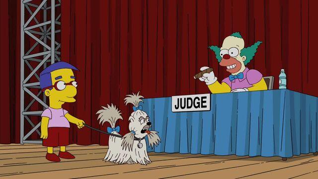 File:Judge Me Tender 34.JPG