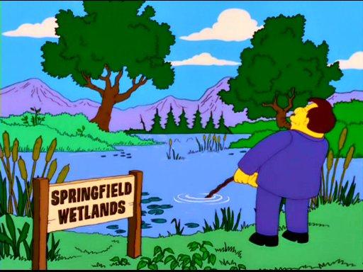 springfield wetlands simpsons wiki fandom powered by wikia