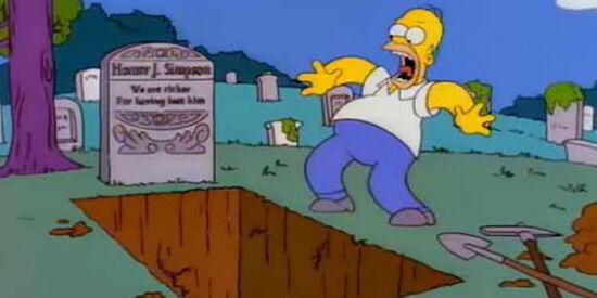 Homer grave 010