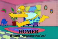 Homer Alone Looney Tunes Homer