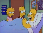 Homer's Triple Bypass 102