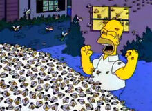 Homer abelhas açucar