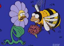 Flanders flor abelha