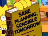 Sane Planning, Sensible Tomorrow