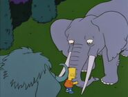 Bart Gets an Elephant 90