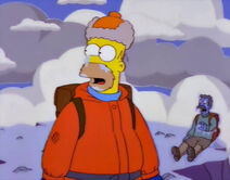 Zmarznięty Homer