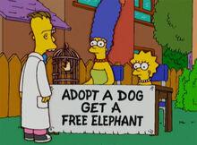Marge lisa adoção animais dr frink