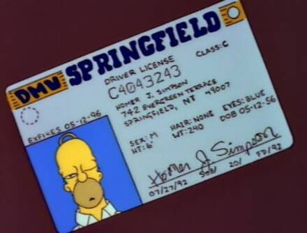 Driving licence homer oficial