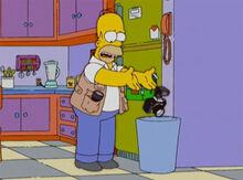 Homer camera fotografica lixo