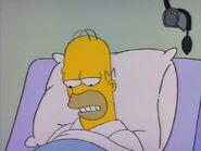 Homer's Triple Bypass 73