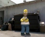 Homer10