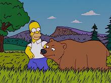Homer urso amigos 3