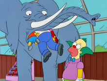 Krusty elefante magumbos