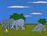 Bart Gets an Elephant 109