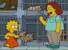 Lisa adota cachorro feio
