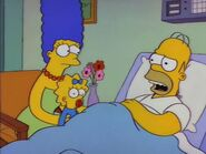 Homer's Triple Bypass 95