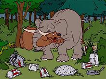 Urso ataque elefante 1