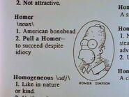 Homer Defined 109