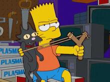 Bart atiradeira gato