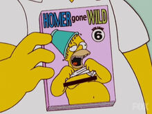 Homer DVD 6 reality