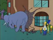 Bart Gets an Elephant 40